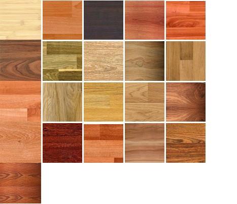 Отличительные особенности и применение древесных пород