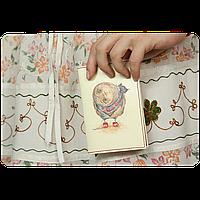 """Обложка для паспорта BlankNote """"Любопытство"""" + блокнотик"""
