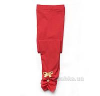 Лосины для девочки Модный карапуз 03-00519 красные 104