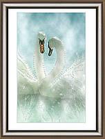 Набор картина стразами Crystal Art Белые лебеди ЧМ КС-1039