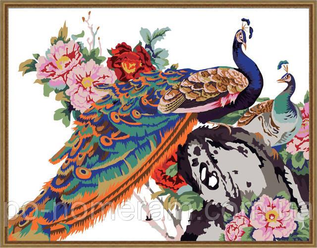 Картины по номерам с изображением птиц, животных и фен-шуй