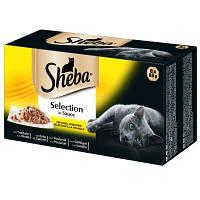 Sheba Selection 85гр*18 шт-консервы  для кошек в ассортименте, фото 1