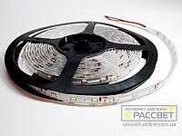 Светодиодная лента Standard 3528 60 LED 4,8Вт/м IP54 (покрыта силиконом)