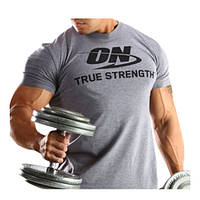 Футболка Optimum Nutrition	Одежда	ON T-shirt dark grey (L size)