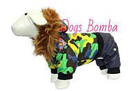 Комбинезон A-5 размер 4(S)(28см) Dogs Bomba