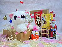 Новогодний детский набор со сладостями Арт.26