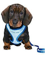 TRIXIE Поводок + шлея+ желетка для собак 26-34 cm / 10 mm голубой