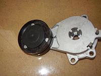 Ролик натяжной ремня генератора Chery Amulet A11 (Чери Амулет A11), A11-8111200AB.