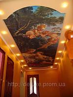 Потолок натяжной фотопечать