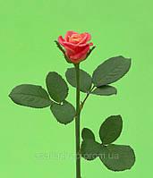 Роза 60см Лампион