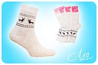 Носки женские махра оптом Житомир, Одесса, Киев, купить носки оптом от производителя.