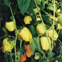 Семена перца Бьянка F1 250 сем. Enza Zaden