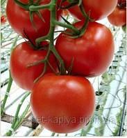 Семена томата Комитт F1 1000 сем. Семинис.