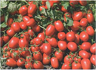 Семена томата Адванс F1 дражированные 25000 сем.Нунемс.