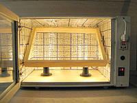 Автоматический Инкубатор Господар-80, с автопереворотом на 80 яиц