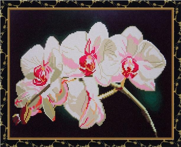 Рисунок для вышивки орхидеи 52