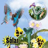 БАБОЧКА на солнечной батарее