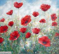 Картина маслом цветы Маковое Поле