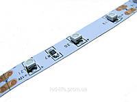 Светодиодная лента SMD 3528 60ш т/метр ВСЕ ЦВЕТА - (открытая)