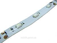 Светодиодная лента SMD 3528 60 шт/метр ВСЕ ЦВЕТА -(герметичная)