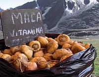 Мака Перуанская органическая