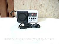 Цифровой Мини Приемник WS-239 USB SD MP3