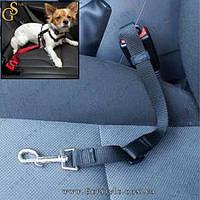"""Автомобильный ремень безопасности для собак - """"Travel Belt"""""""