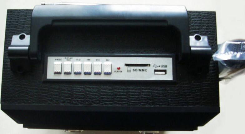 Радио музыкальный центр NewKanon KN-631MIC акустическая система, фото 2