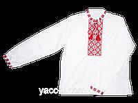 Рубашка, вышиванка Украинская народная традиционная для школы мальчику