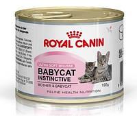 Упаковка Babycat Instinctive 195гр (для котят до 4мес. для кормящих кошек,мусс)