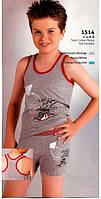 Комплект для мальчика майка и шорты