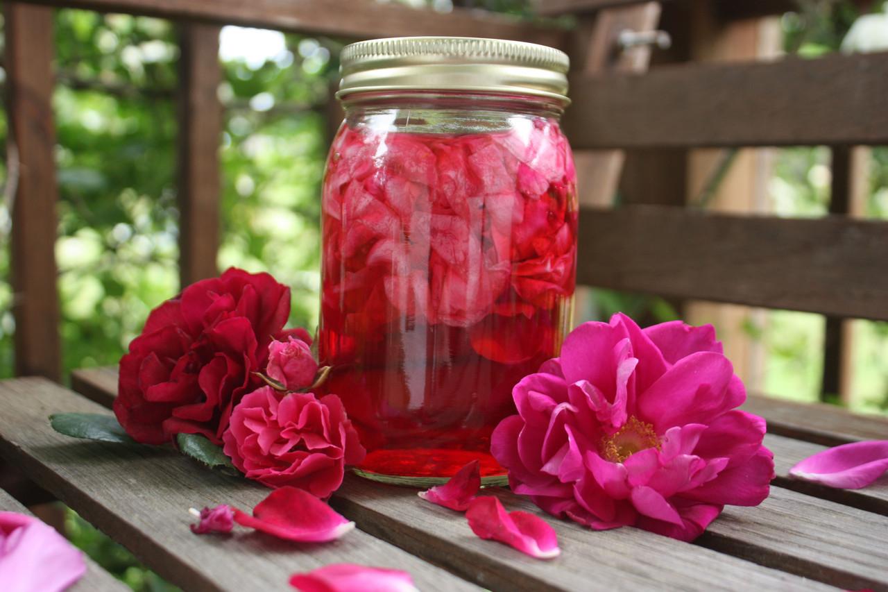 Как сохранить цветы в глицерине 15