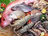 Мороженые морепродукты,рыба
