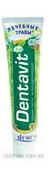 ВІТЭКС Зубная паста «Dentavit» Лечебные травы (Дентавит)