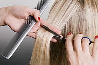 Курс «парикмахер-стилист»