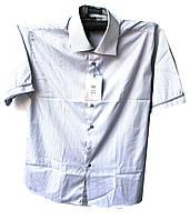 Рубашка мужская светлая