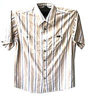 Рубашка мужская в полоску