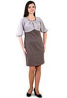 """Платье трикотажное , """"Лилия"""",большие размеры, ПЛ 773594, трикотаж , XL-XXL / 50-52 Кофе с молоком."""