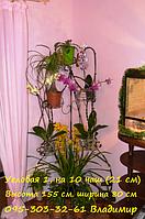 """Подставка для цветов """"Угловая большая на 10 чаш"""""""