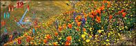 Настенные часы панорамные, кварцевые Поле, Цветы (30х90 см), часы для дома, часы картина