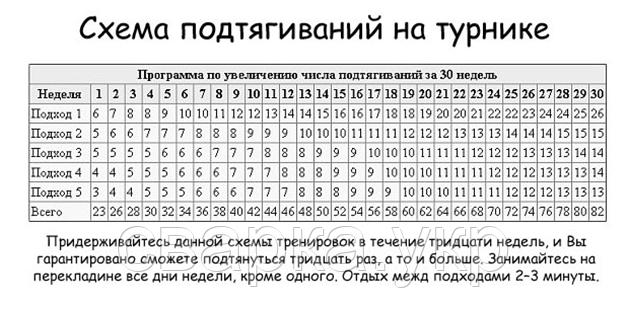 79276686_w640_h2048_shema.png? ...