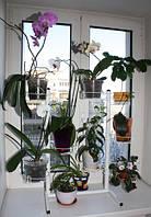 """Подставка для цветов """"Орхидея-Фиалка"""""""