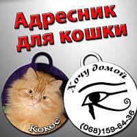 Адресник для кошки