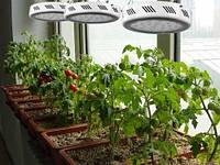 Лампа для растений 90W (10 полных спектров) - замена ДНАТ, ДНАЗ, фото 1