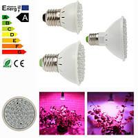 Лампа 2,2W для досветки растений цоколь Е27 (2 спектра синий/красный)