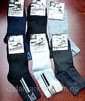 Мужские носки на лето - СПОРТ