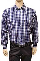 """Мужские рубашки 2014 """"Brossard"""". Cиняя клетка. Длинный рукав"""