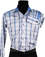 """Мужская рубашка """"Pierre Martin"""". Синяя клетка(длинный рукав)"""