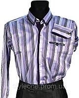 """Рубашка мужская """"Pierre Martin"""". Сиреневая полоска(длинный рукав)"""