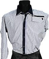 """Рубашка мужская """"Pierre Martin"""". Белая клетка(длинный рукав)"""